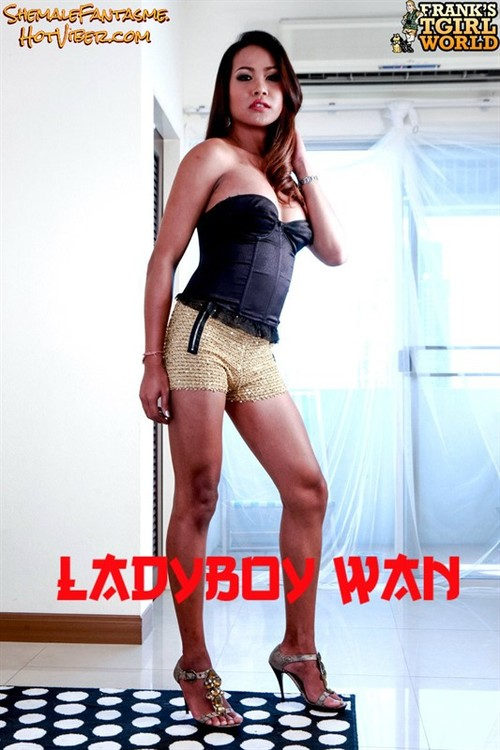 Ladyboy Wan