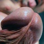 mon gland
