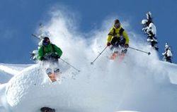 Vive le skis?
