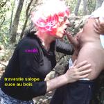 salope travestie pour defonces sexuelles a plusieurs hommes