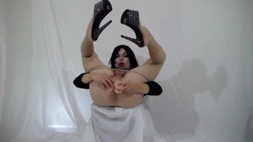 Vidéos pornos de superbes travestis