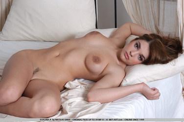 Evalina A