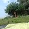 plage nudiste sauvage au bord d'un lac
