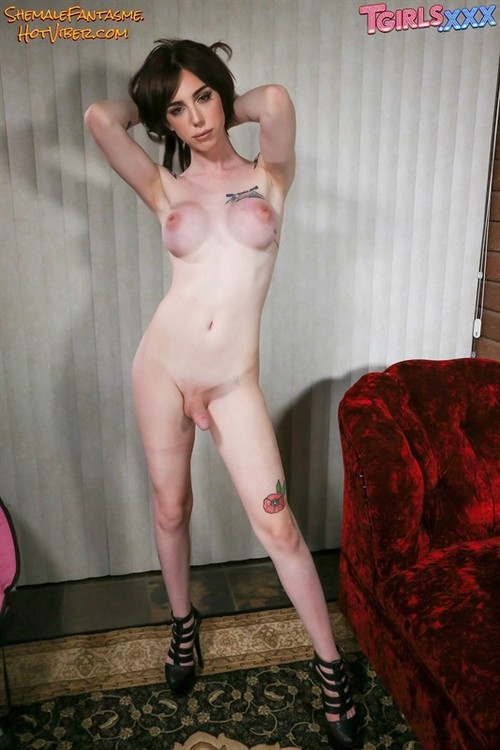 Annabelle (set 20)